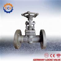 进口蜗轮浆液阀德国洛克
