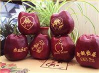 苹果印字机水果印刷机梨橙子西瓜印图机器
