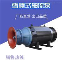 大功率潛水軸流泵廠家