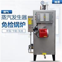 注塑脫蠟專用全自動燃氣蒸汽發生器