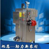 收缩炉加温专用70KG燃气蒸汽发生器