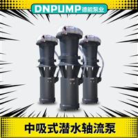 中吸潜水轴流泵型号