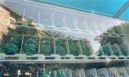 雀巢为其英国饮用水品牌推出100%rPET塑料瓶